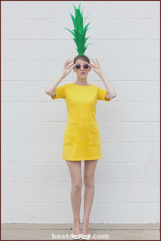 DIY Homemade Pineapple Costume