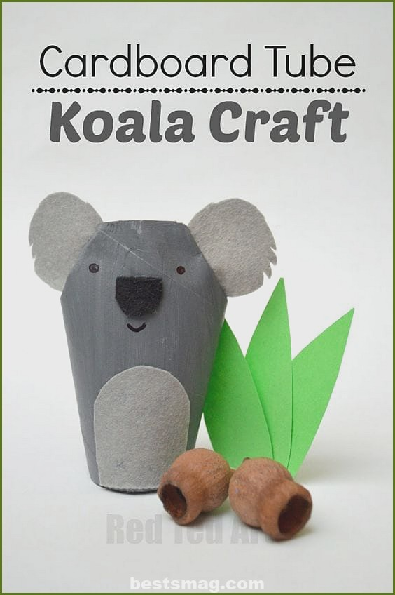 Animals with cardboard rolls