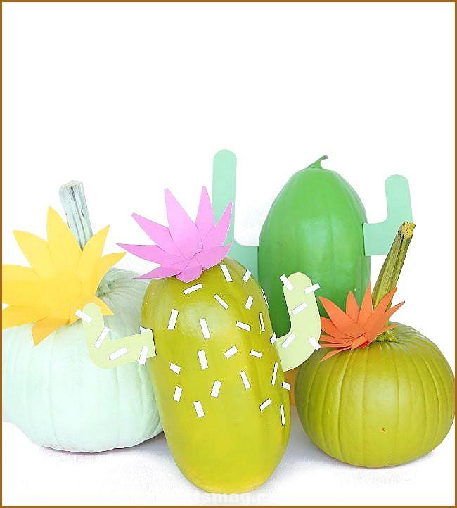 Decorate Pumpkins Halloween Cactus